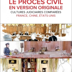 Lisez ou relisez l'e-book « le procès civil en version originale »